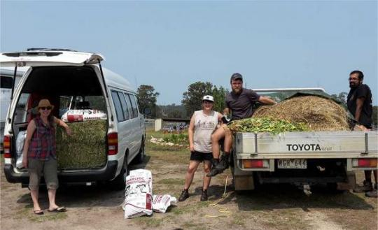 Two vehicles loaded up to deliver food for wildlife to fire impacted landholders